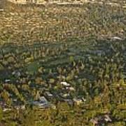 Aerial View Of Bellevue Skyline Art Print