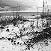After The Storm Bw Art Print