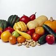 Agriculture - Autumn Fruits Art Print