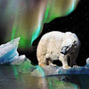 Alaska Aurora Polar Bear Search Art Print
