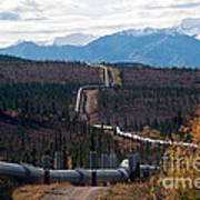 Alaska Oil Pipeline Art Print