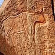 Ancient Engraving Of A Buffalo At The Wadi Matkhandouch In Libya Art Print