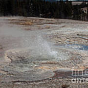 Anemone Geyser In Upper Geyser Basin Art Print