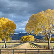 Arizona Horse Ranch Art Print