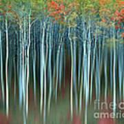 Army Of Trees Art Print