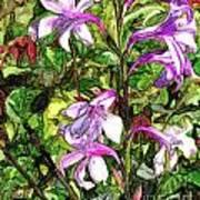 Art In The Garden II Art Print