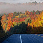 Autumn Colors And Road  Art Print