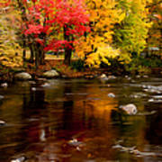 Autumn Colors Reflected Art Print