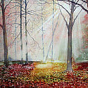 Autumn Extravaganza Art Print