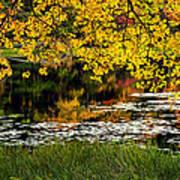 Autumn Pond 2013 Art Print