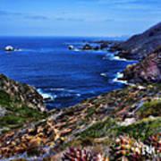 Baja Coast Art Print