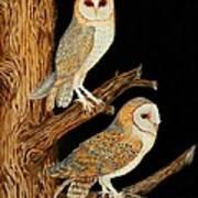 Barn Owl Duo Art Print