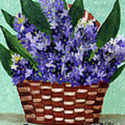 Basket Of Hyacinths  Art Print