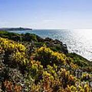 Bass Strait Ocean Landscape In Tasmania Art Print