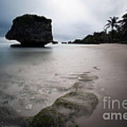 Bathsheba Beach Barbados Art Print