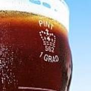 Beer Pint Glass Art Print