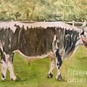 Bill's Bull Art Print