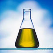 Biodiesel In Erlenmeyer Flask  Art Print