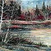 Birch Lake Art Print