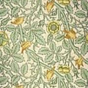 Bird Wallpaper Design Art Print