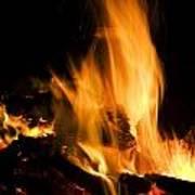 Blazing Campfire Art Print