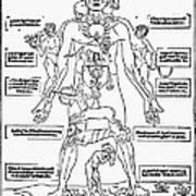 Bloodletting Chart, 1493 Art Print