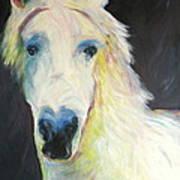 Bright Eyed Bailey Art Print
