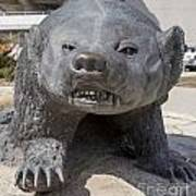 Badger Statue 4 At Uw Madison Art Print