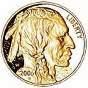 Buffalo Nickel Art Print by Fred Larucci