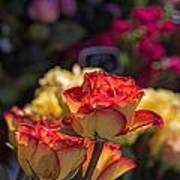 Buy Me A Rose Art Print