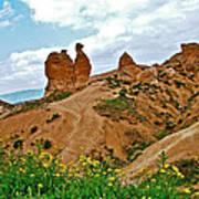 Camel In Camel Valley In Cappadocia-turkey Art Print
