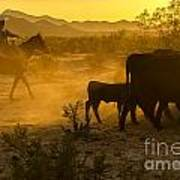 Cattle Drive 6 Art Print