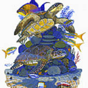 Cayman Turtles Art Print