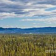 Central Yukon T Canada Taiga And Ogilvie Mountains Art Print