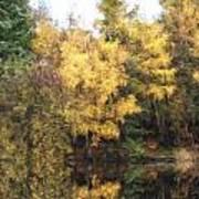 Cezanne Style Digital Painting Beautiful Vibrant Autumn Woodland Reflecions In Calm Lake Waters Art Print