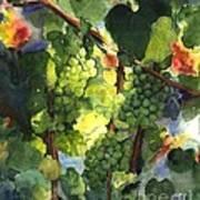 Chardonnay Au Soliel Art Print