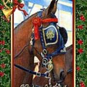 Cleveland Bay Horse Christmas Card Art Print