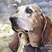 Coonhound - Pumpkin Art Print