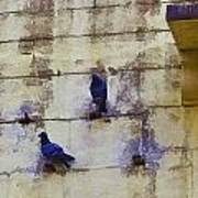 Couple Of Pigeons On A Wall Art Print