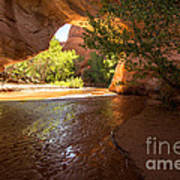 Coyote Natural Bridge - Coyote Gulch - Utah Art Print by Gary Whitton