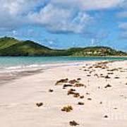 Deserted Beach At Vieux Fort Art Print
