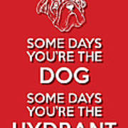 Dog Or Hydrant Red Art Print