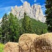 Dolomiti - Alpine Pasture Art Print