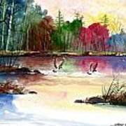 Duck Lake Art Print