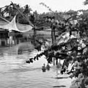 Ducks And Flowers In Lagoon Water Art Print