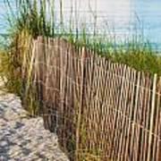 Dune Fence On Beach  Art Print
