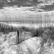 Dune Fences Art Print