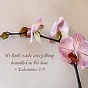 Ecclesiastes 3 11 He Hath Made Everything Beautiful Art Print