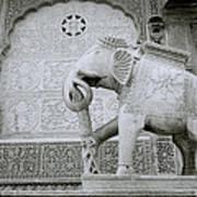 The Beautiful Elephant Art Print
