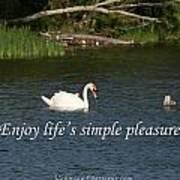 Enjoy Lifes Simple Pleasures Art Print